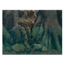 Aquarium and Background - Tree Trunk Background Poster 50cm Tall